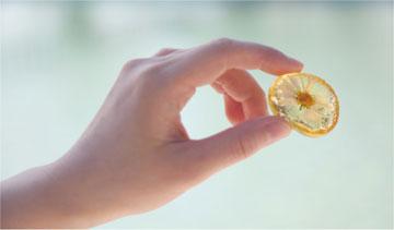 花やハーブを閉じ込めた砂糖菓子「herbarium(甘い標本)」。