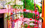 「香水の都・グラース」人気フレグランスの故郷は花で溢れた素敵な街でした