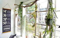 壁の模様替えで、お部屋に春の装いを
