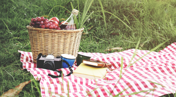 20170407 picnic 360 1
