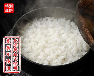 新米 滋賀県産 農薬不使用 極上近江コシヒカリ 28年産