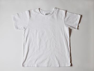 standard t / WHITE