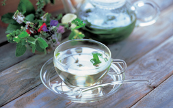 メディカルハーブの香りで心も身体も健康に。おすすめハーブティー3選