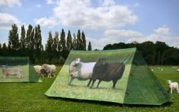 アウトドアの季節到来! 注目を集めるテントたち