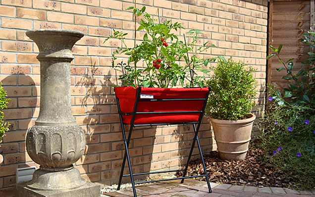 ベランダで始められる、憧れの家庭菜園