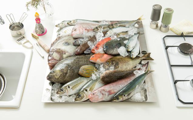 美味しい魚を手に入れたい!