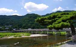 嵐山の日本庭園カフェとイケメン人力車を満喫。京都女子旅におすすめ