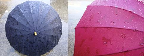 犬が浮き出る傘
