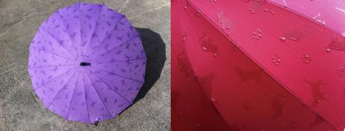 猫が浮き出る傘